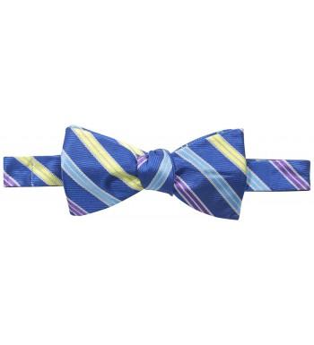 Happy Ties Stripe Reversible Bowtie